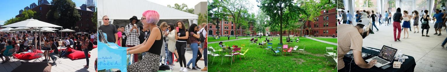 Banner Image - Chairs in Harvard Yard - Science Plaza - Children Reading Group in Harvard Yard
