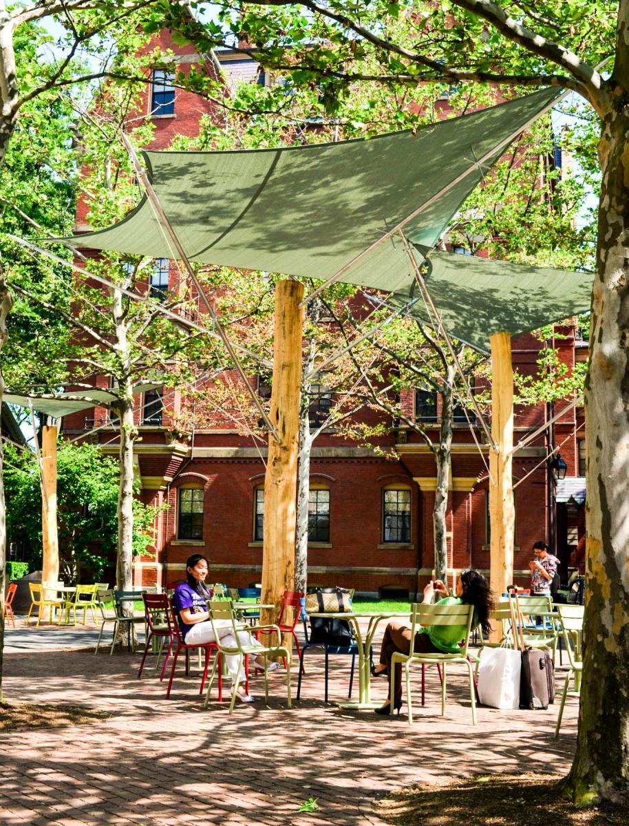 [The Patio at Harvard University]