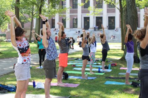 Community members doing yoga poses in Harvard Yard