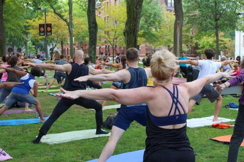 "Community members doing the yoga posture ""Warrior Two"" in Harvard Yard"