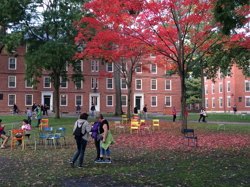The Chairs in Harvard Yard - Fall